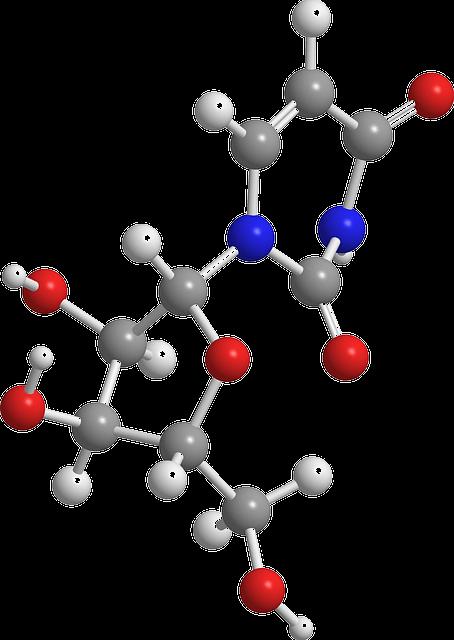 5Nukleové kyseliny
